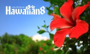 ハワイの掲示板